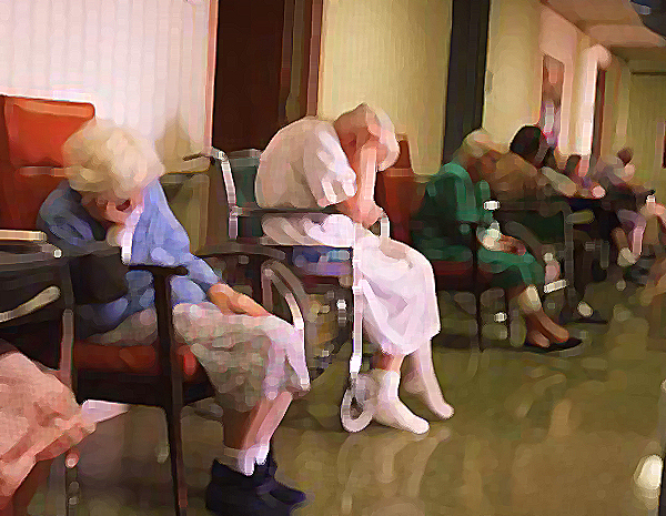 the decline in the care of the elderly in nursing homes in america Lynching the elderly led to the decline in enrollments in schools of nursing services will force the nursing homes to provide quality care by citing.