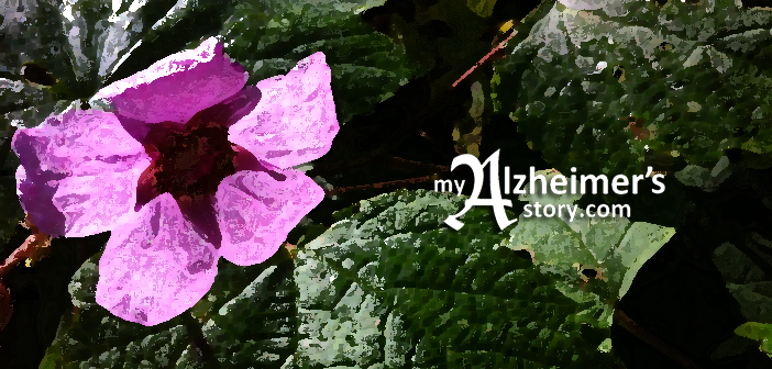 alzheimer's speaks' lori la bey and i agree on the beauty of dementia